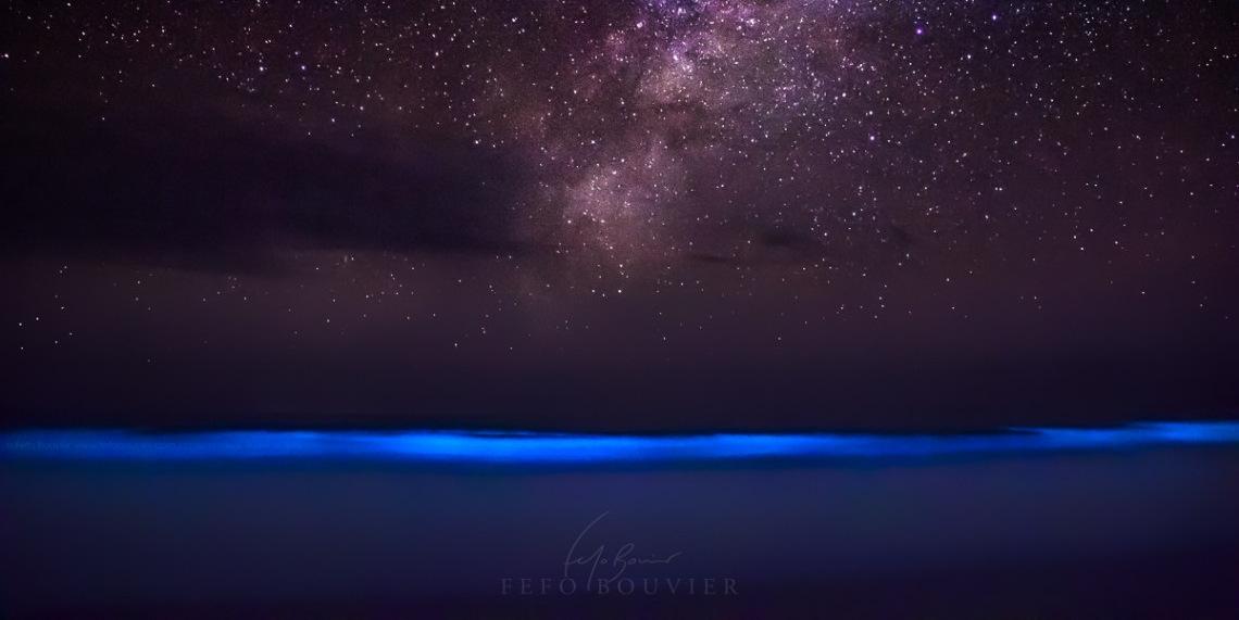El espectáculo mágico de las noctilucas en Cabo Polonio